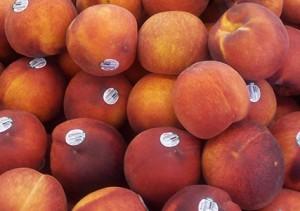 Fruta des